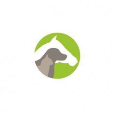 Tierheilkunde-Oldenburg